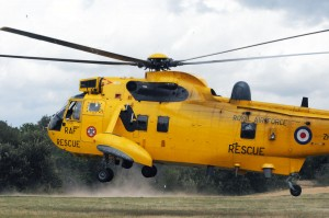 Seaking landing in Epping Forest.